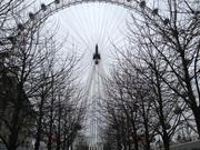 londoneye.jpg
